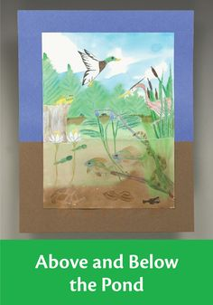 Have your students in 4th, 5th, and 6th grade illustrate the ecosystem around a pond with this science lesson plan.