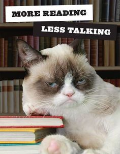 Even Grumpy Cat enjoys reading.