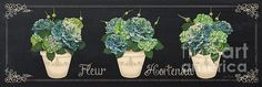 New print available on plout-gallery.artistwebsites.com! - 'Fleur Hortensia-jp3018' by Jean Plout - http://plout-gallery.artistwebsites.com/featured/fleur-hortensia-jp3018-jean-plout.html