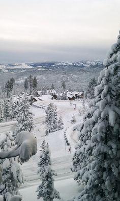 Winter Wonderland at Lake Tahoe