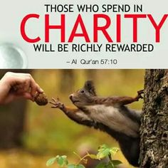 """Narrated 'Adi bin Hatim heard the Prophet Muhammad Sallallahu alaihi wasallam saying: """"Save yourself from Hell-fire even by giving half a date-fruit in charity Saheeh Bukhari Vol 2 Book 24 Number 498"""