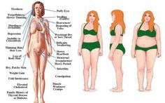 3 Forgotten Essential Thyroid Diet Principles