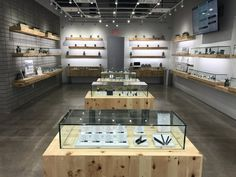 Image result for cannabis display cases
