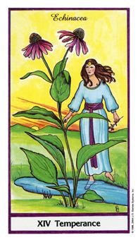 April 23 Tarot Card: Temperance (Herbal Tarot deck) Now is the time to put your energy into your relationships and work toward true balance