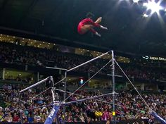 flying squirrel! Wow! Like mckalya on vault :)