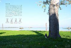 <br>木陰で島を行き来する船を見つめる猫PROFILE 小林 希(こばやし・のぞみ) 1982年東京都出身。立教大学卒業。在学中から海外をバックパッカーとして旅をする。2005年サイバーエージェント入社。アメーバブックス新社で多くの書籍を編集した後、2011年末に退社、その日の夜から旅に出る。1年後帰国して、その旅を綴(つづ)った『恋する旅女、世界をゆく―29歳、会社を辞めて旅に出た』(幻冬舎刊)でデビュー。現在も旅をしながら執筆活動をする。 BOOK 世界の美しい街の美しいネコ 世界の美しい街の美しいネコ (エクスナレッジ)小林 希著・写真 猫がいるだけで、どうしても私にはその街が穏やかで、優しさに満ちているような気がしてしまう。だから、また私は猫に会いたくて旅にでてしまうのだろう(あとがきより)。そんな旅人とネコの54の物語。見ているだけでネコと街に心癒やされます。