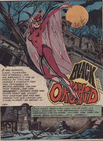 The mysterious and elusive undercover-detective/super-hero...the Black Orchid! Creepy and atmospheric magic created by artist supreme Tony DeZuniga (R.I.P.)  He and Nestor Redondo made a special world of seedy underbellies and dark corners that suited the unknown quotient--so of course somebody had to deviate from that mystique! But back when she was done right....Adventure Comics # 428