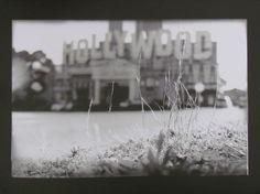 Film prints.