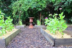 Organized veggie garden #garden #veggiegarden