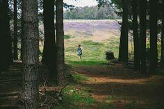 #vsco #freedom #flowers #wild #whitesandwoods #pineforest #purple