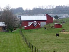 Quilted Barn, originally uploaded by Mike D'Angelo. I have been to Johnson City and I must have missed this. i'm not sure I really got off the main street, though.  I would love to be there now....