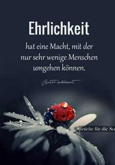 (notitle) - words of wisdom - True Quotes, Best Quotes, German Quotes, German Words, True Words, Good To Know, Quotations, About Me Blog, Wisdom