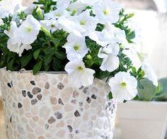 How To: DIY Pebble Planter | Home Decor News