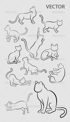 Cat Gesture Sketches  #GraphicRiver         11 sketch of cats movement. Smooth and detail vector. Easy to use or change color.