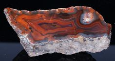 Gorgeous Polished Translucent Fortification Agate End Cut