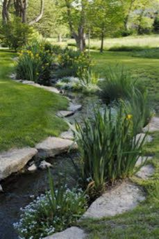 We got the stream....  love the edging so the lawn won't just get washed away by the water.