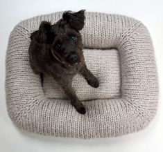 Free Knitting Pattern for Pet Bed - Raii's Bed features a depressed center with a squishy pillow and big, sturdy, stuffed sides that the dog can rest its head on. Designed by Jacqueline Cieslak Knitting Patterns For Dogs, Knitting Projects, Knitting Ideas, Crochet Projects, Crochet Patterns, Gilet Crochet, Crochet Pillow, Knitted Cat, Knitted Animals