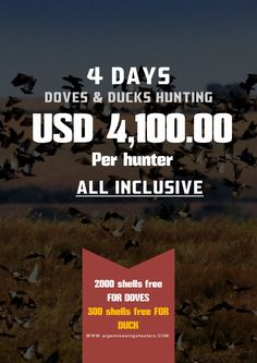 Dove and Duck hunting in Argentina. Enjoy all the action of the Argentina Dove, Pigeon and Duck hunting with C&C Outfitters. Live the adventure right now! http://www.argentinawingshooters.com/