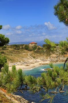 Locals have been known to call them the Galician Caribbean. One look at the stunning Cíes Islands, with their pearly white sands and pristine turquoise waters, and you'll see why.    Rodas Beach, which connects two of the islands, looks like what you think of when you think of a paradise beach.     Visiting the islands is not a free-for-all and there is a limit to how many people can visit each day, so book your place on the boat well in advance. Beautiful Islands, Beautiful Beaches, Festivals In August, Old Fort, Paradise Island, Lofoten, Turquoise Water, Whale Watching, Sandy Beaches