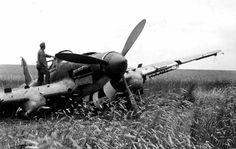 Il-2 crash landing, June 1941.