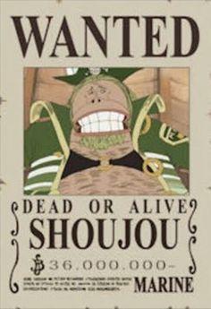 Shoujou One Piece Bounties, Dead Alive, One Peace, One Piece Anime, Geek Stuff, Straw Hats, Fan Art, Manga, Pikachu