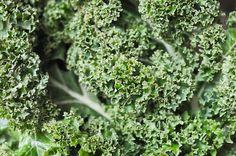 50 Idées pour utiliser le kale