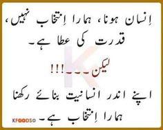 Urdu Quote. .اردو اقتباس. .Follow me here MrZeshan Sadiq