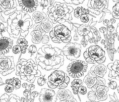 floral coloring-style fabric by kristinnohe on Spoonflower - custom fabric