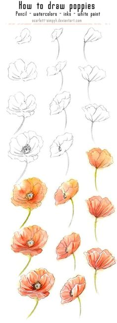 20 Delicate Colorful Watercolor Flowers Painting Tutorials In Images 20 zarte bunte Aquarell Blumen malen Tutorials in Bildern Painting & Drawing, Watercolor Paintings, Flower Watercolor, Watercolor Water, Poppies Painting, Tattoo Watercolor, Poppy Flower Painting, Poppies Art, Watercolor Flowers Tutorial