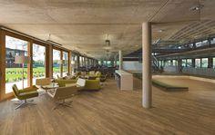 Expona Commercial luxury vinyl tile flooring - Amber Classic Oak