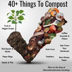 40+ things you can compost!