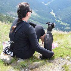 #actijoy #dog #hikewithdog #travelwithdog