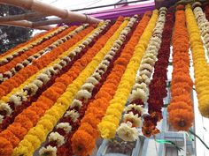 The marigold flower, also known locally as 'the Genda Phool' - India