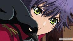 pics of hakkenden All Anime, Manga Anime, Anime Boys, Hakkenden, Webtoon, Animation, Dogs, Cute, Pictures