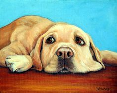"""Lazy Yellow Labrador Retriever, Lying on Red Floor, Blue Background Dog Art 8x10"""" Print by Painter Dottie Dracos  At the time of this listing in March 2013, the original acrylic painting, on a 16x20x3"""