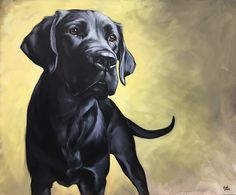 """Commissioned dog portrait,""""Dixie"""" (Black Labrador) 