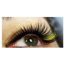 Shop - Eyelash Extensions - LASHPRODUCTS UK LTD
