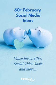 60+ February Social Media Ideas - Video Ideas, GIFs and more!