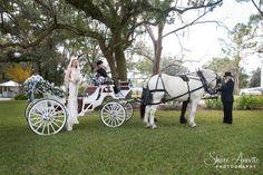 Saxon Manor Weddings  #shireeannettephotography, #saxonmanor, #brooksvilleweddingphotographer, #bestphotographerbrooksvillefl, #bestphotographertampafl, #tampaphotographer, #weddingphotographybrooksvillefl, #weddingphotographytampa, #weddingphotographerbrooksville, #saxonmanorevents, #weddingsatsaxonmanor, #weddingportraitsbrooksville, #weddingsbrooksville, #bestweddingpicturesever