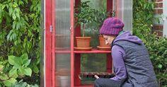 Baumarktregal als Gewächshausschrank - DIY Gartendekor Dollar speichert Gardening For Beginners, Gardening Tips, What Is Urban, Balcony Planters, Creative Workshop, Garden Images, Wooden Shelves, Diy Garden Decor, Tropical Plants