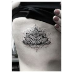 Amazing lotus by Dr. Woo.