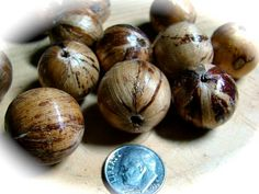 Beads Banana leaf laminated 22 mm round beads by NancyLynnDesigns