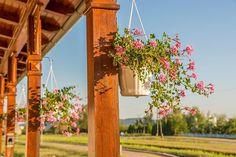 #hungary#travel #summer #ikozosseg #mik #instadaily #photooftheday #rural #nature #turista #magyarorszag #kéktúra #bejárhatómagyarország #sümeg #railwaystation