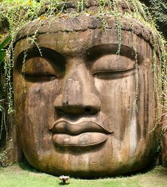 The Olmecs. The original tribe that implanted themselves all around the world.. and who do they look like.