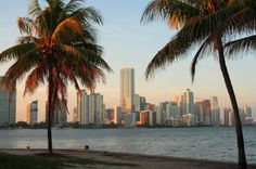 12 Cheap and Fun Things to Do in Miami