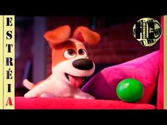 Pets - A vida secreta dos bichos [2016] THE SECRET LIFE OF PETS | DUBLAD...