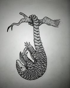 Image result for pangolin tattoo