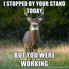 Deer hunting time
