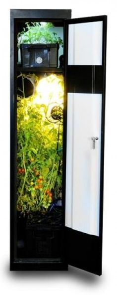 Grow Boxes for Hydroponic Gardening