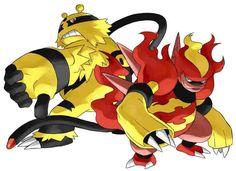 Magmortar Vs. Electivire | Pokémon Amino